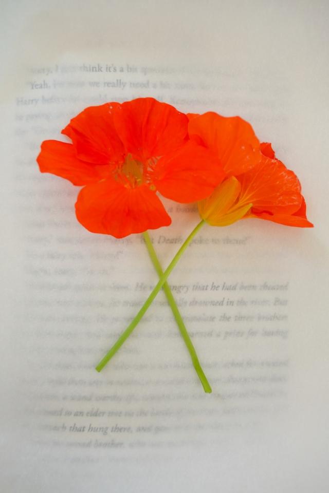 FlowerBookmarks (2 of 17)