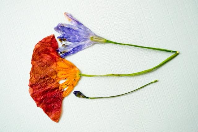 FlowerBookmarks (7 of 17)