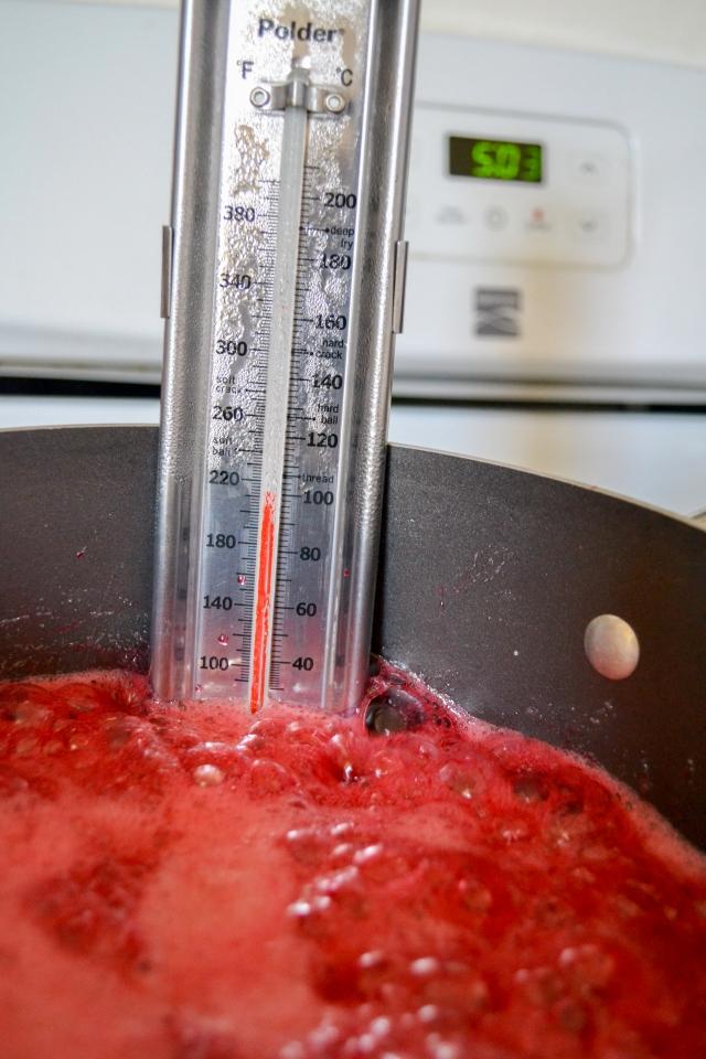 Rspberry jam (9 of 19)