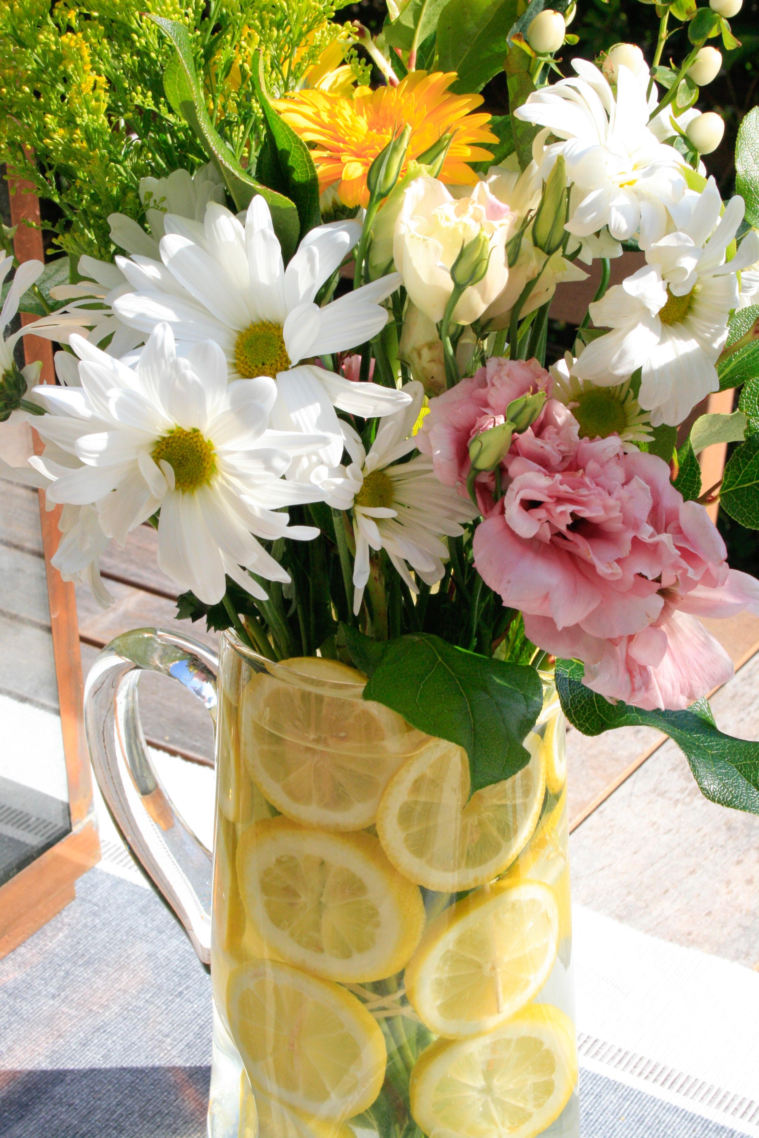 lemon flowers (11 of 20)