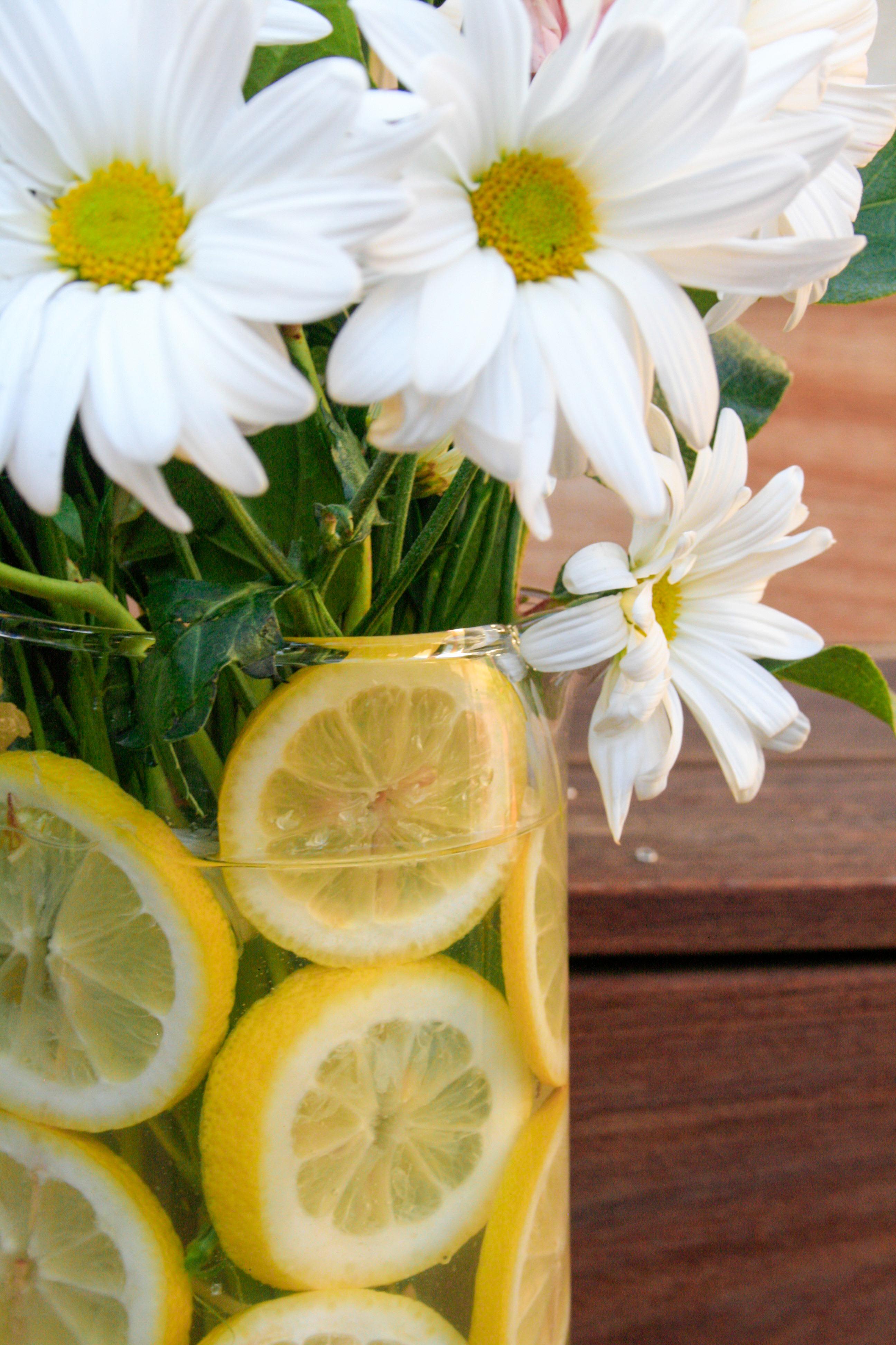lemon flowers (19 of 20)