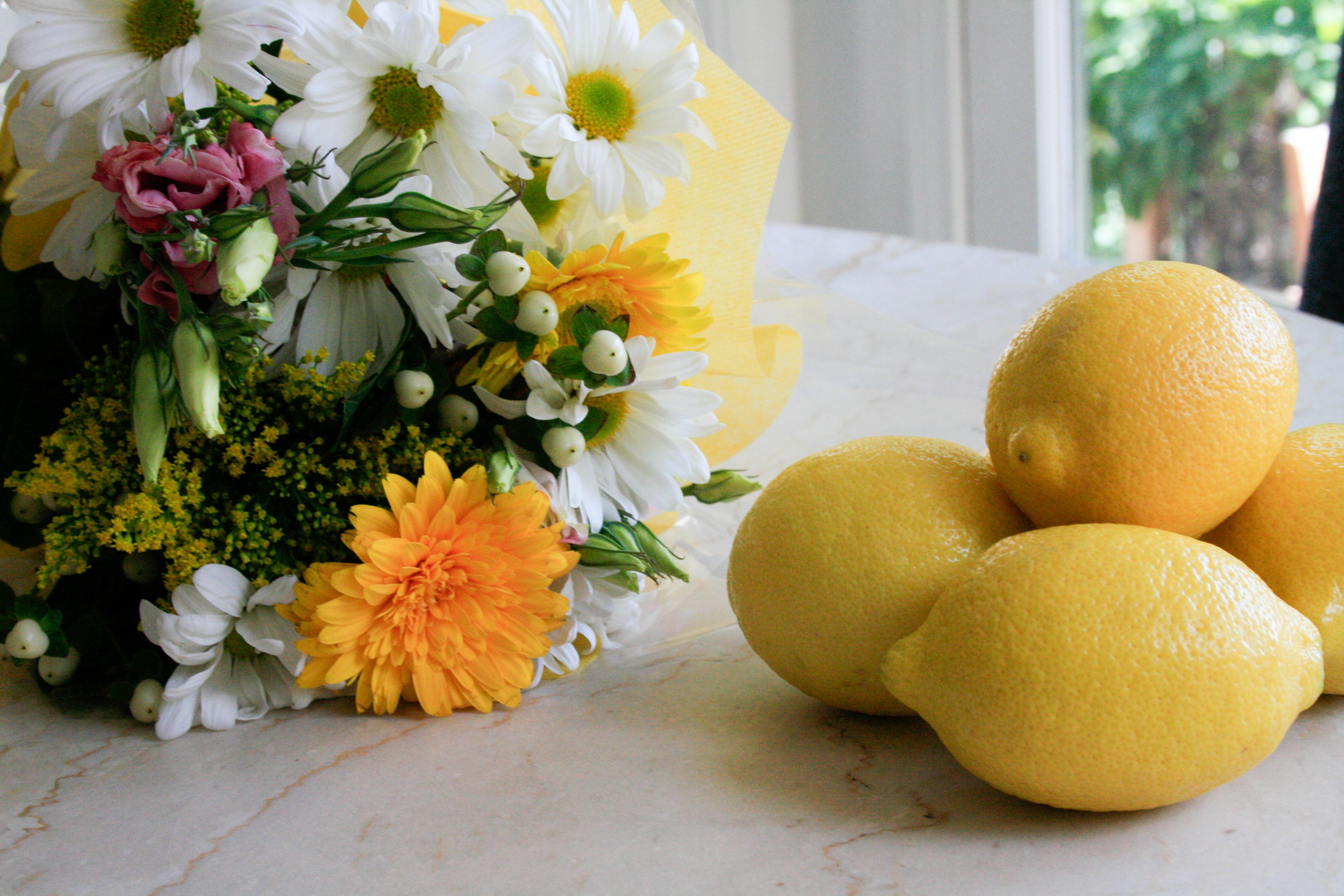 lemon flowers (2 of 20)